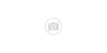 Hair Colors Different Dye Change Beauty Landscape
