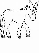Donkey Coloring Printable Burro Bestcoloringpagesforkids Cartoon Template Draw Bible Animal Drawing Animals Printables Esel Activities sketch template