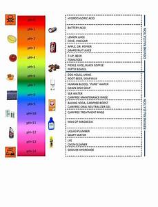 Ph Scale For Kids Definition