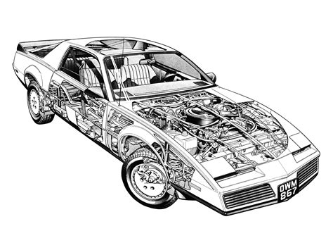 Trans Am Bird Coloring Pages