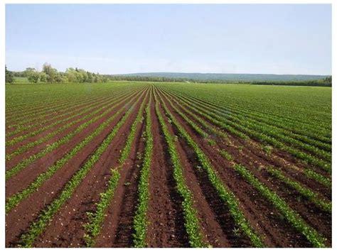 accaparement des terres symptôme du modèle agricole