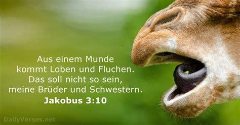 jakobus  bibelvers des tages dailyversesnet