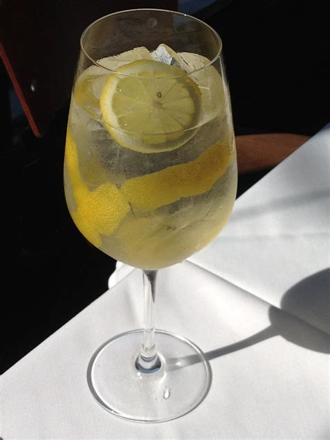 wine spritzer wine spritzer recipe dishmaps
