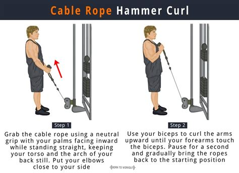 Standing Dumbbell Curl by Cable Hammer Curl Exercise For Making Your Arms Bigger