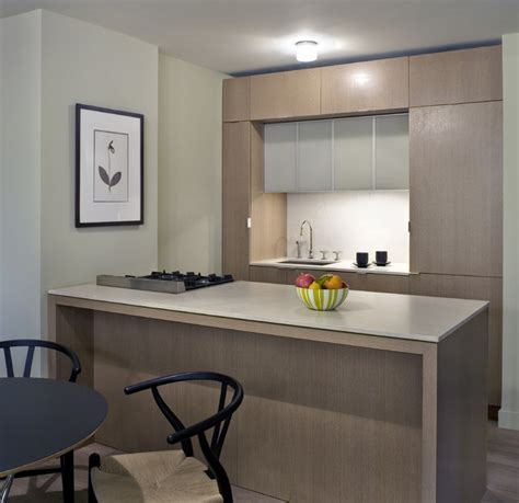 rector square modern kitchen  york  incorporated