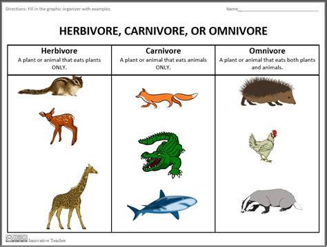 Herbivore, Carnivore, Omnivore Graphic Organizer  Science Pinterest