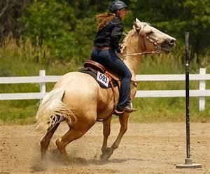 Palomino western gaming horse | leonierobertsphotography