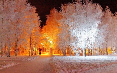 Snow Lights by Winter Lighting Wallpapers 1920x1200 997319