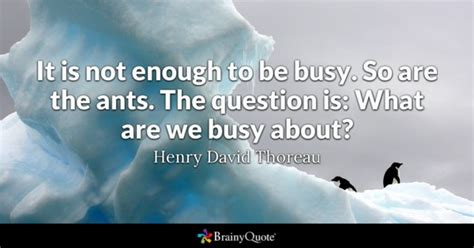 Questions Quotes Brainyquote Question Quotes Brainyquote