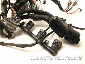 2008 Audi A4 Audi Engine Wire Harness - 8e1971074ga