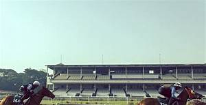 Major Horse Racing Clubs in India - The Indian Wire
