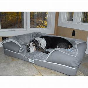 best dog bed in november dog bed reviews dog beds and costumes With best dog bed for diggers