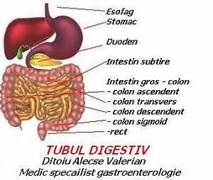 diaree cronica tratament
