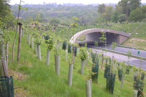 Green bridges: safer travel for wildlife - GOV.UK