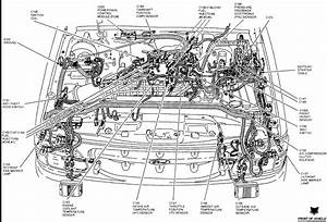 Encontr U00e1 Manual  95 Ford Explorer Hose Diagram