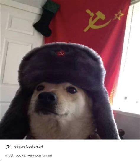 Comrade Doggo Know Your Meme