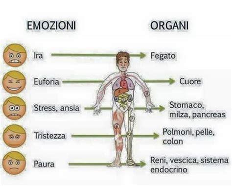Corpo Umani Organi Interni Come Possono Le Emozioni Influire Sul Corpo Umano