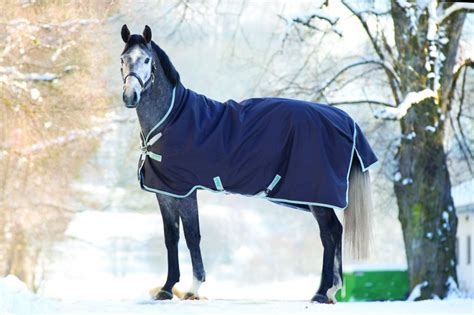 Horseware Amigo Bravo12 Wug 250g Winterdecke Daselfo