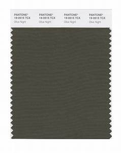 BUY Pantone Smart Swatch 19-0515 Olive Night