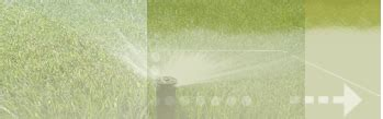 Lawn Care, Irrigation, Fertilization, Aeration