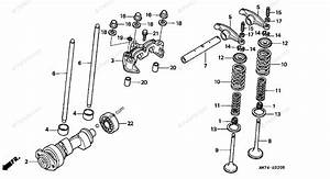 Honda Atv 2002 Oem Parts Diagram For Camshaft