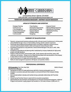 resume examples for it professionals appealing formula for wonderful business administration resume