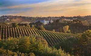 Premium Italian Wines – WineCollective Blog  Italian