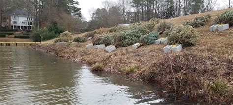 Aquascape Environmental by The Tree That Keeps On Giving Aquascape Enviromental