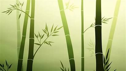 Habits Zen Surrendered Person State