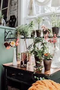 Diy, Window, Shelf, Herb, Garden, U2013, Two, Paws, Farmhouse