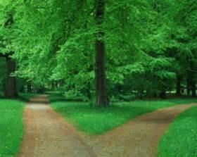 Two Paths | Teaching on Purpose