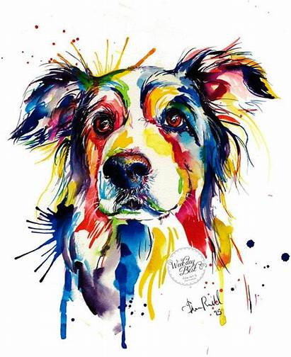 Colorful Border Collie Animal Colourful Paintings
