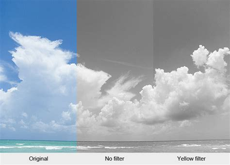 coloured filters  black  white photography