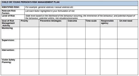 templates  risk management action plan google search
