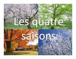 the four seasons in beautiful images of trees from each season this is great for