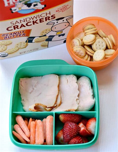 brown bag lunch ideas school lunch ideas for picky eaters
