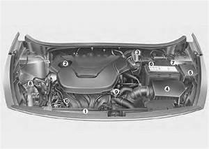 Mettre Du Liquide De Refroidissement : kia rio compartiment moteur entretien manuel du conducteur kia rio ~ Medecine-chirurgie-esthetiques.com Avis de Voitures