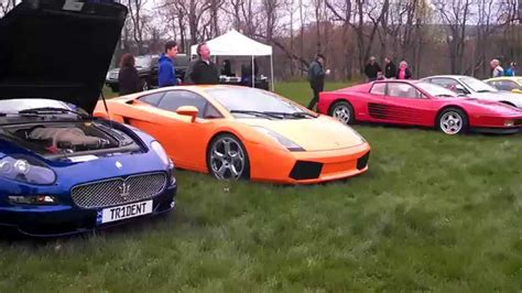 """5th Annual Exotic And Sports Car Show """"cool Cars For Cats"""
