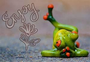 Frosch Bilder Lustig : kostenloses foto frosch entspannt figur lustig kostenloses bild auf pixabay 914240 ~ Whattoseeinmadrid.com Haus und Dekorationen