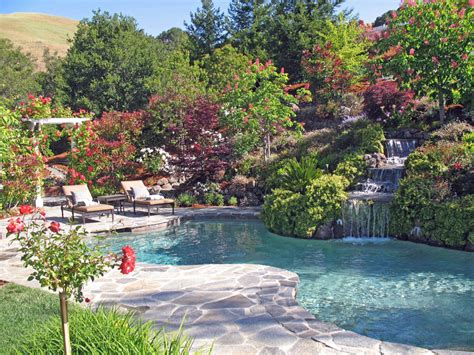 landscaping hillside hillside landscape natural swimming pool and spa waterfall sanders ranch dr moraga