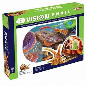 17  Best Images About Tedc Toys 4d Vision Animal Anatomy