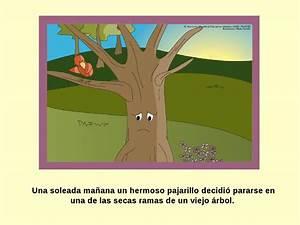 """ISSUU Cuento """"El viejo árbol"""" by Lourdes mapi"""
