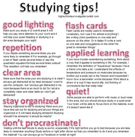 Study Tips And Motivational Bits  Stephanie's Blog