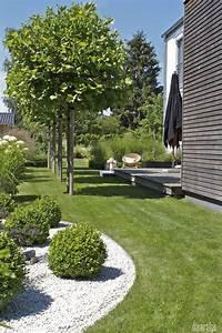 Pflanzen Im Schatten : platane als sonnenschirm wohn design ~ Orissabook.com Haus und Dekorationen