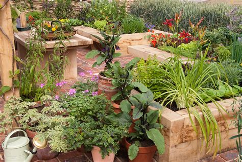container vegetable gardening ideas best container