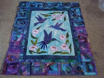 Quilt Hummingbird Border Nifty Stitcher Crumby Blocks