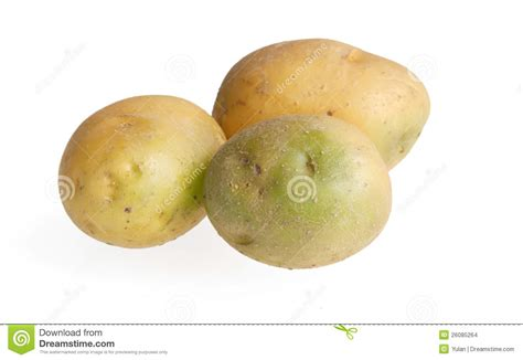 pommes de terre vertes toxiques images stock image 26085264