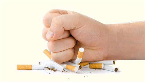 chambra 13 complet lutte contre le tabac l association lalla salma mène une