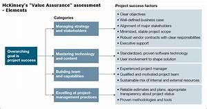 Mckinsey Value Assurance Assessment Elements