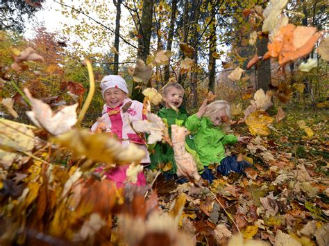 Garten Im Herbst Arbeiten by Gartenarbeit Im Herbst Wiener Ma 48 Bietet Laubsack Als
